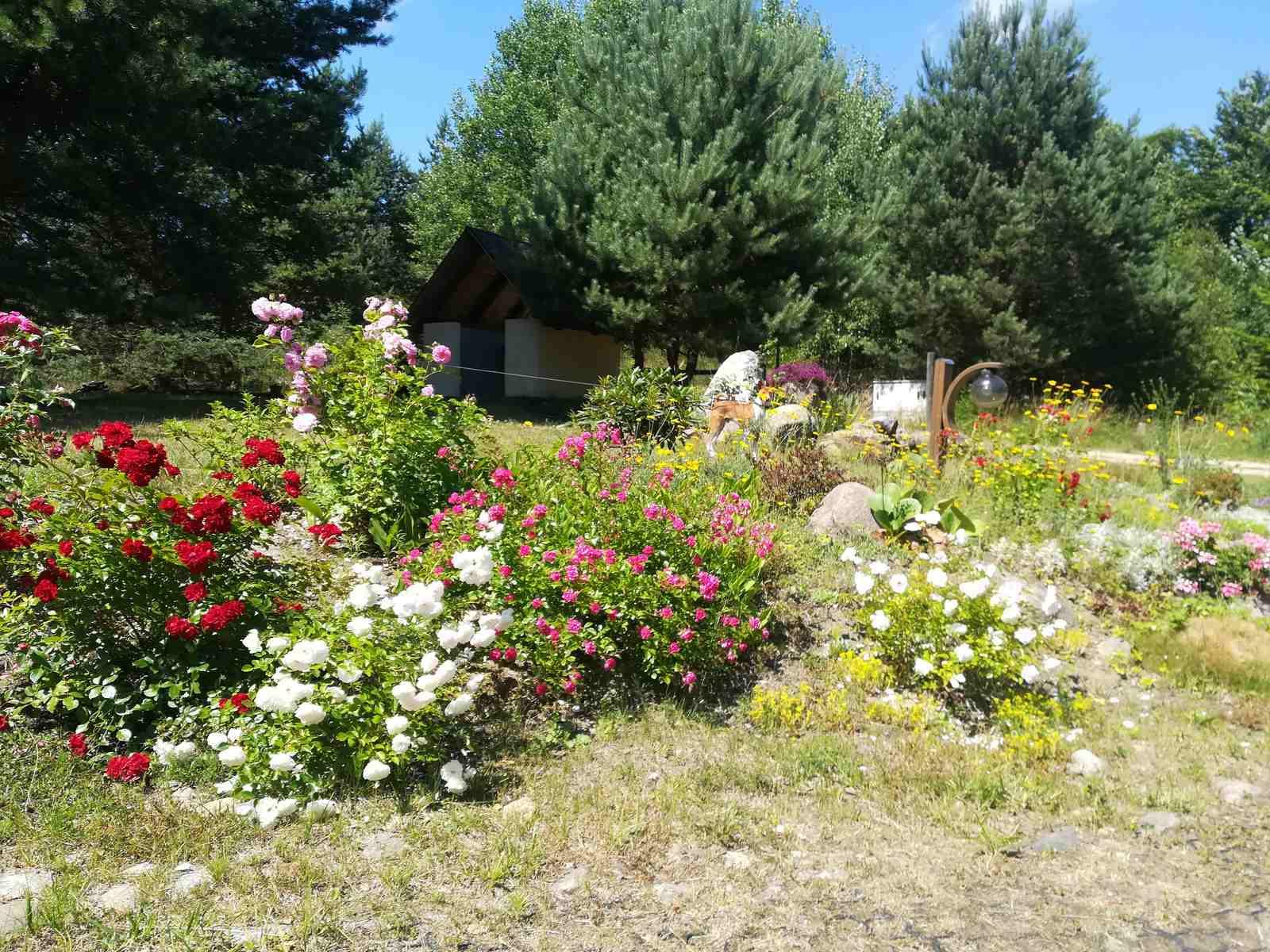 Ogród towyjątkowe miejsce