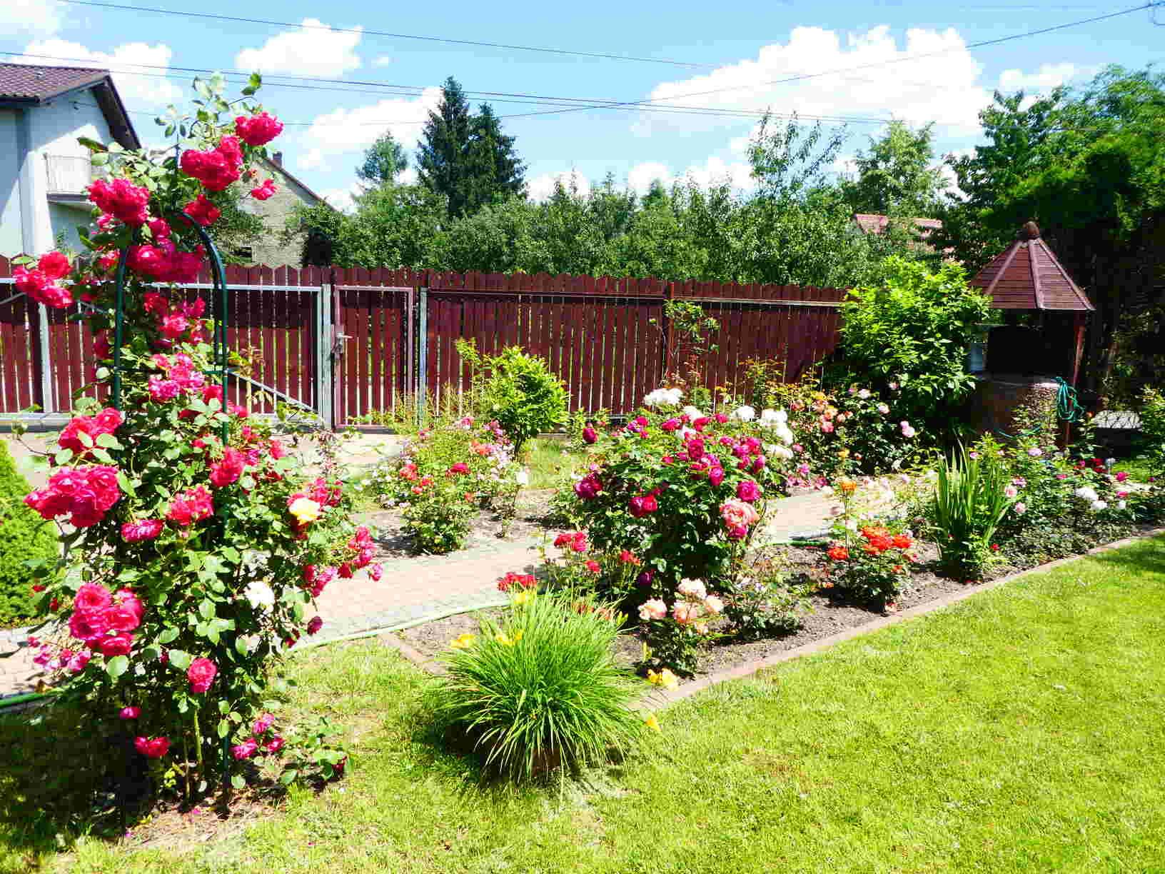 ogrody różane